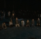 ドラマ「ウォーキングデッド シーズン6」16話のネタバレあらすじ結末まとめ